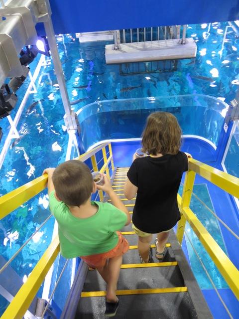 Two children feeding the fish at Dubai aquarium.