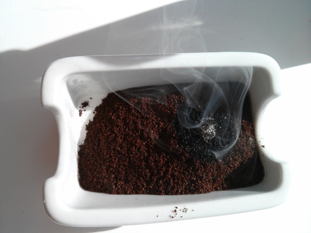 Wasp Coffee