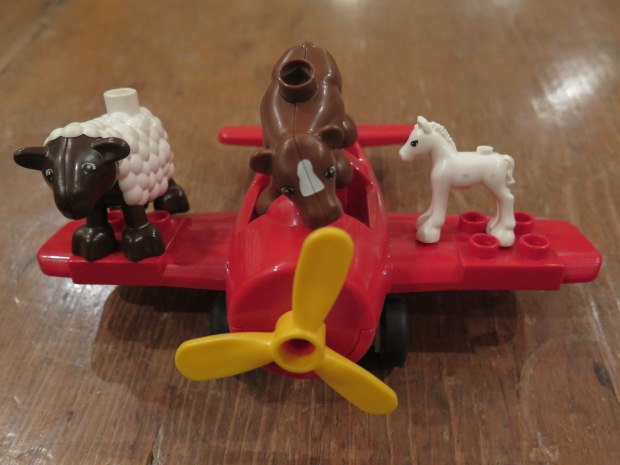 Airplane with animals travelling cattle class.