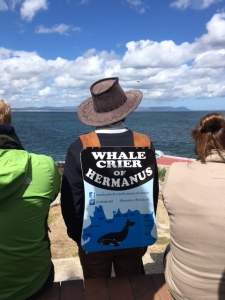 Hermanus Whale Crier staying on the cliffs