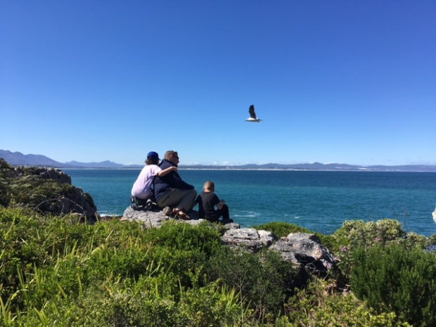 Hermanus cliff top view, family watching for whales