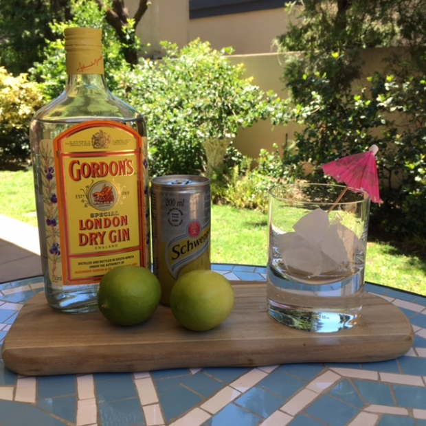 bottle of gordons gin, lime and tonic, associated with expat life