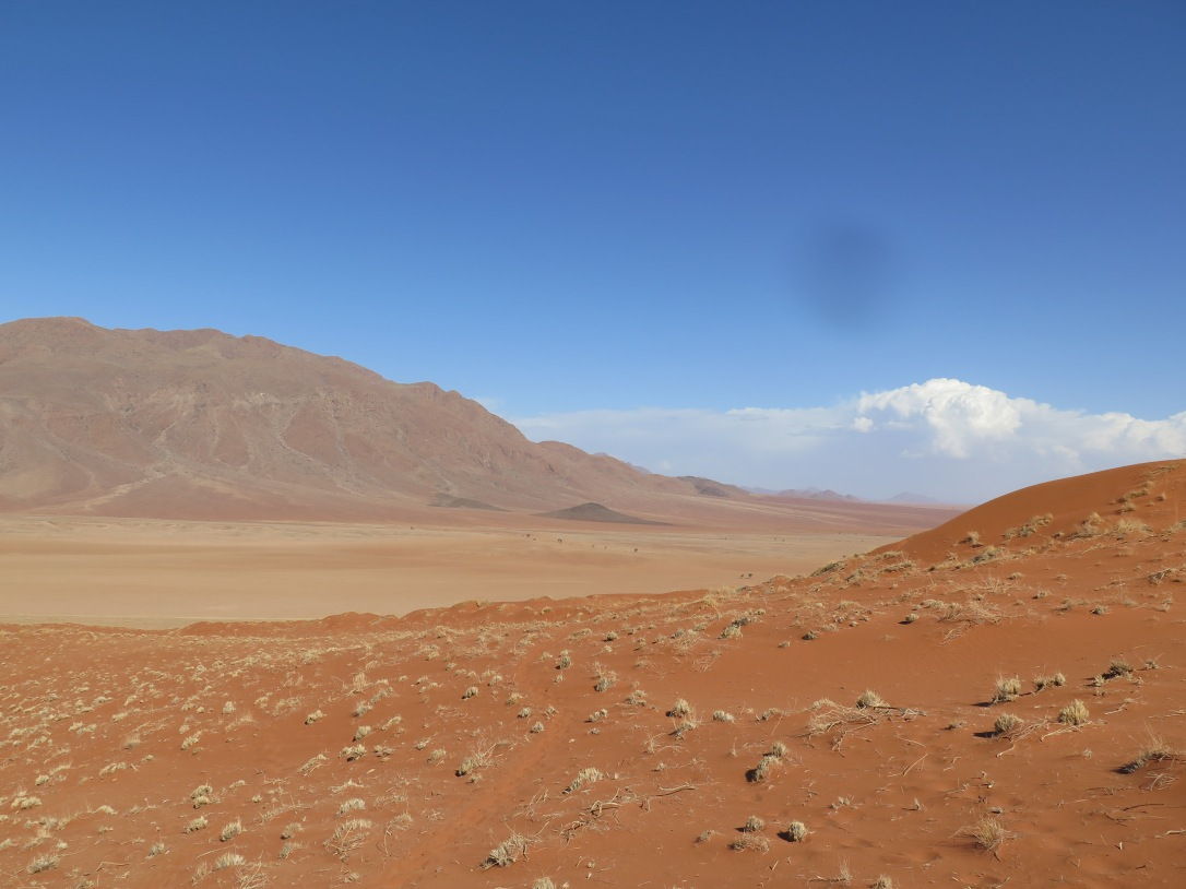 Red dunes, open plain and mountains, Wolvedans.