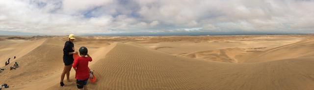 Sandboarding in golden dunes near Swakopmund.