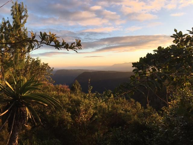 Panorama Route stunning view near God's window Mpumalanga South Africa