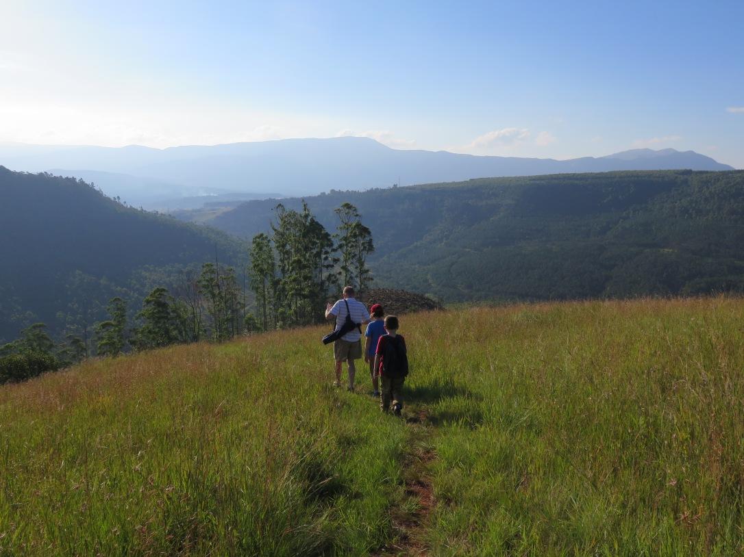 Panorama Route South Africa Walk near Porcupine Ridge Sabie