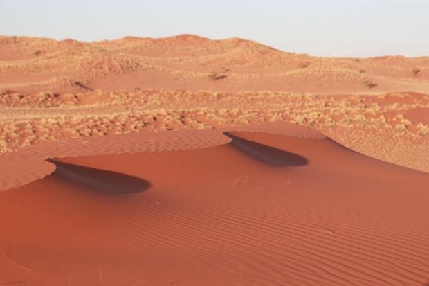 Gorgeous red wind sculpted sand dunes, Namibian desert.