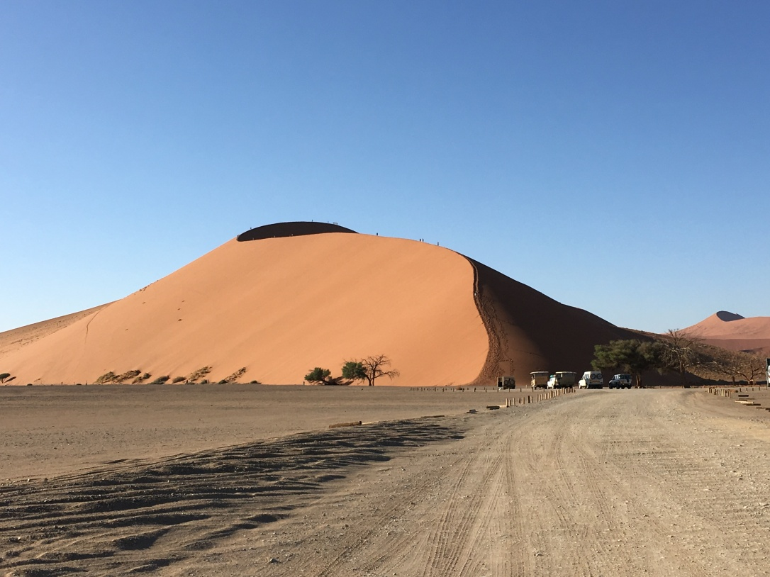 Dune 45 in Sossusvlei Namibia early morning.