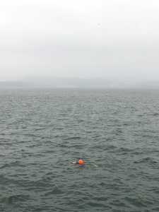 Swimmer with Orange Float, Tolo Harbour, Hong Kong