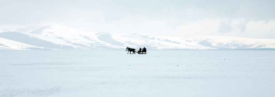 silhouette of a horse with sled on snow covered ground